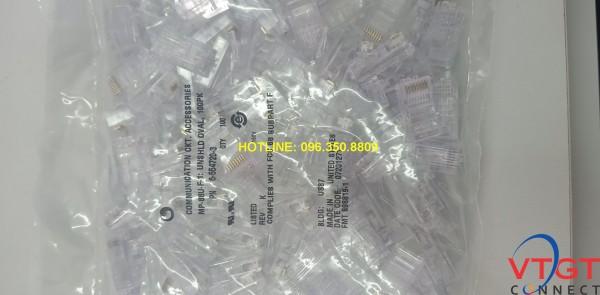 Hạt mạng Cat5e Commscope chính hãng 6-554720-3